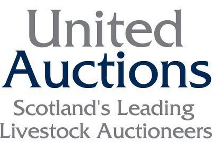 United Auctions logo